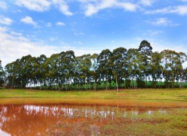 Lagoa Vermelha valoriza tecnologia na administração municipal